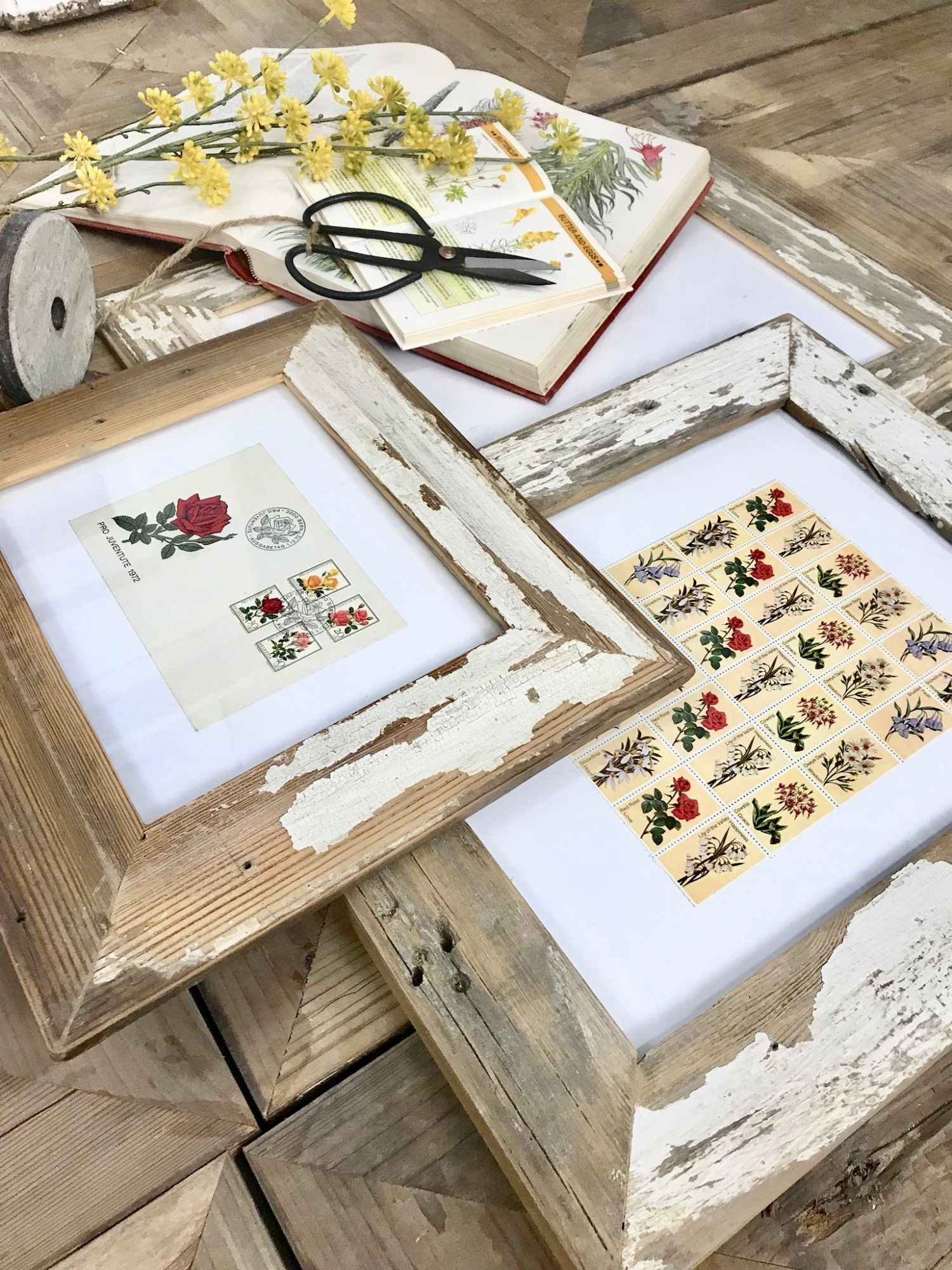 Tips to Framing Vintage Prints & Collections | CuterTudor