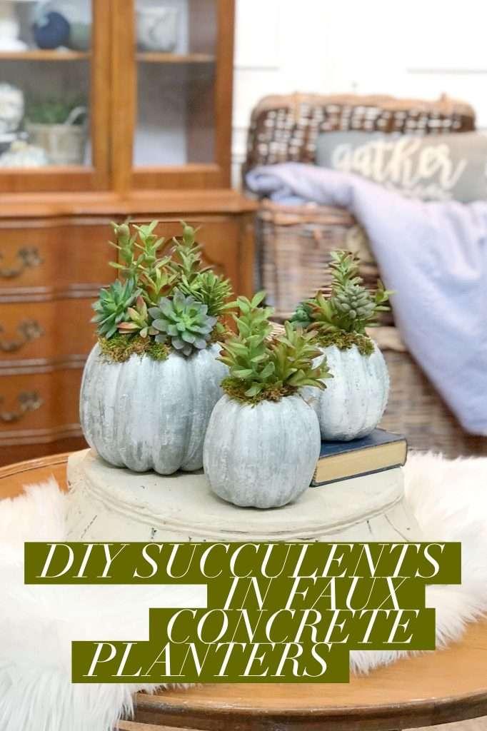 DIY succulents in faux concrete planters